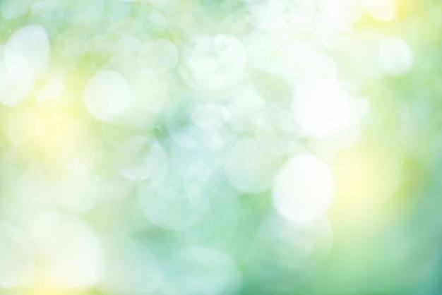 O verde natural deixa o fundo do bokeh. Foto Premium