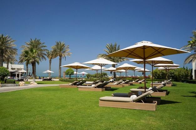 Oásis do hotel de abu dhabi no golfo arábico, abu dhabi. praia ecológica. Foto Premium