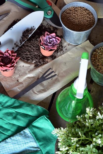 Objetos de jardinagem e plantas na mesa rústica Foto Premium