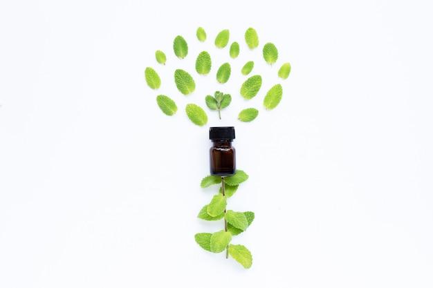 Óleo essencial, com, maçã fresca, hortelã, folhas, branco Foto Premium