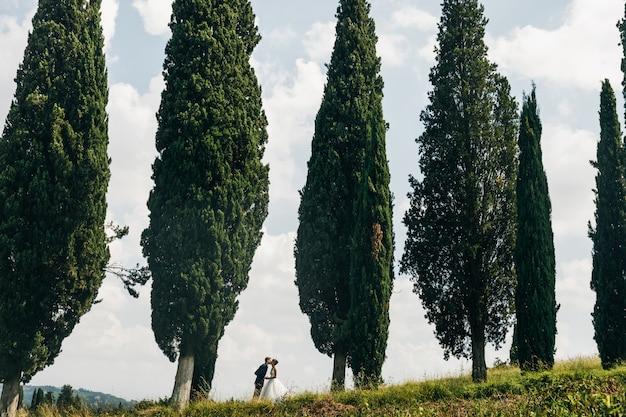 Olhe de longe no lindo casal de noivos se beijando entre o alto ita Foto gratuita