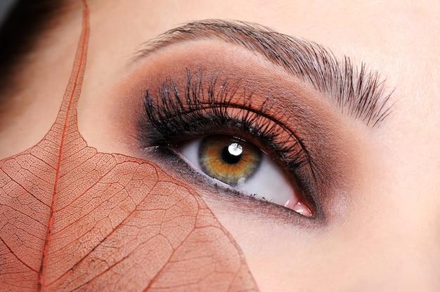 Olhos de mulher com maquiagem marrom brilhante e folhagem no rosto Foto gratuita