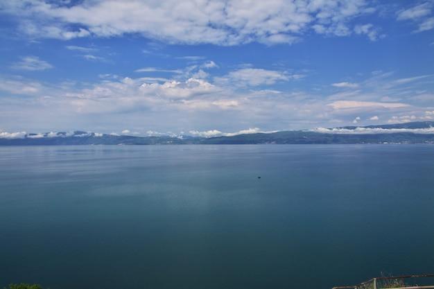 Orquídea do lago na macedônia, baslkans Foto Premium