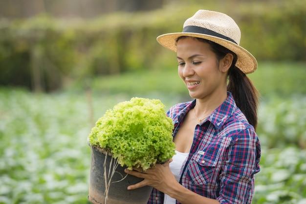 Os agricultores estão trabalhando na fazenda de alface verde carvalho Foto gratuita