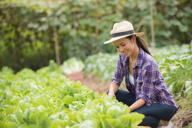 Os agricultores estão trabalhando na fazenda de repolho chinês Foto gratuita