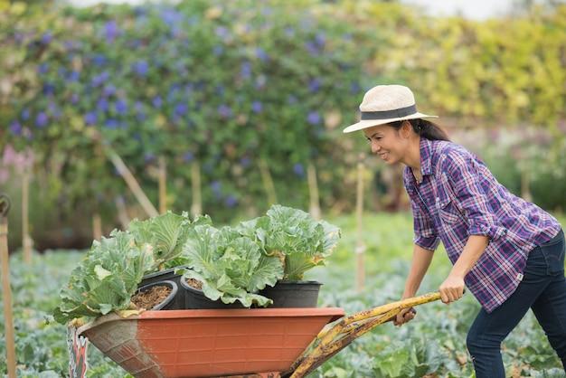 Os agricultores estão trabalhando na fazenda de vegetais. carrinho Foto gratuita