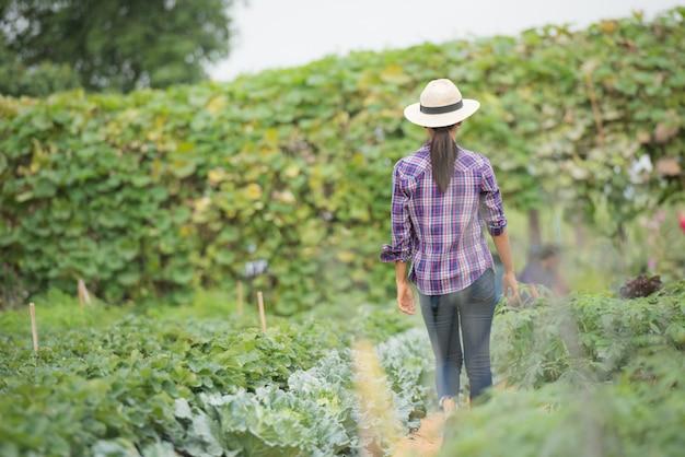 Os agricultores estão trabalhando na fazenda de vegetais Foto gratuita