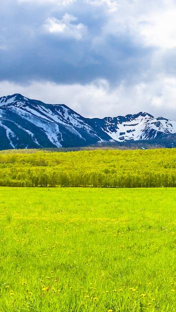 Os campos verdes na frente de montanhas de neve na península de kamchatka Foto Premium