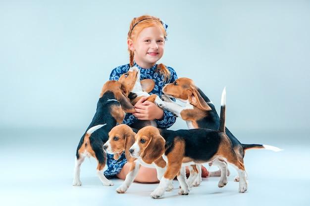 Os filhotes felizes de menina e beagle na parede cinza Foto gratuita