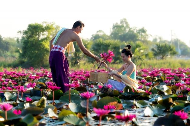 Os homens asiáticos estão coletando flores de lótus vermelhas para mulheres asiáticas para adorar. Foto Premium
