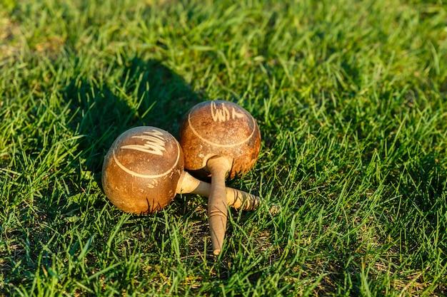Os maracas cubanos encontram-se na grama verde. Foto Premium