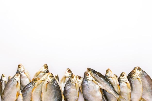 Os peixes secados alinharam em uma fileira em um fundo branco. configuração plana Foto Premium