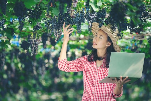 Os produtores de uva estão felizes em vender uvas de mercado on-line Foto gratuita