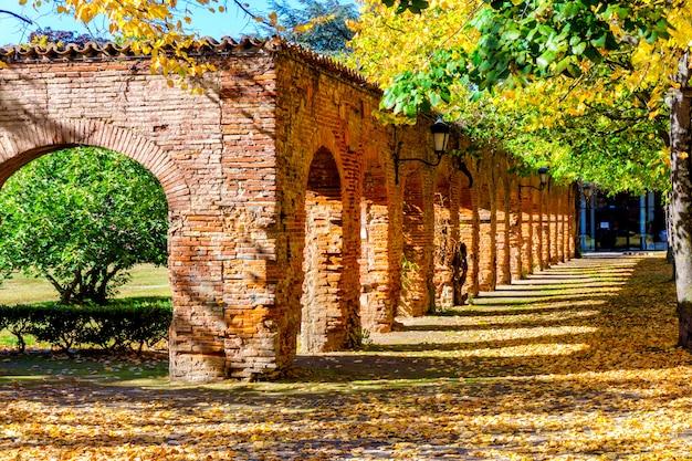 Outono colorido e velha parede de tijolos no parque em toulouse Foto Premium