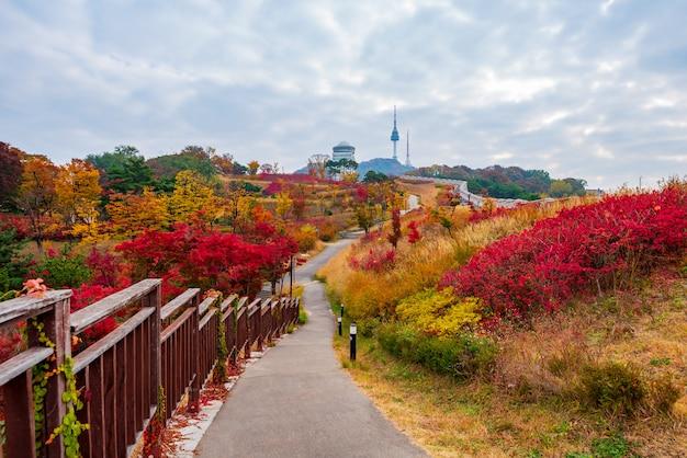 Outono da torre namsan em seul, coréia do sul Foto Premium