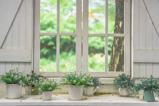 Outono flores no pote no peitoril da janela, rua decorada com flores Foto Premium