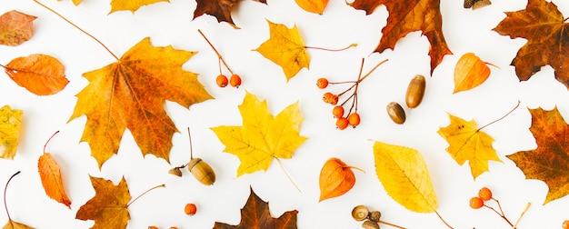 Outono plano colocar plano de fundo em branco Foto gratuita