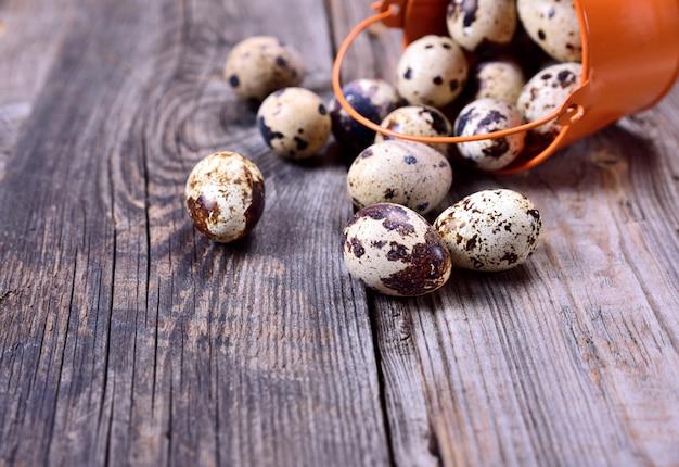 Ovos de codorna crus em um fundo cinza de madeira Foto Premium