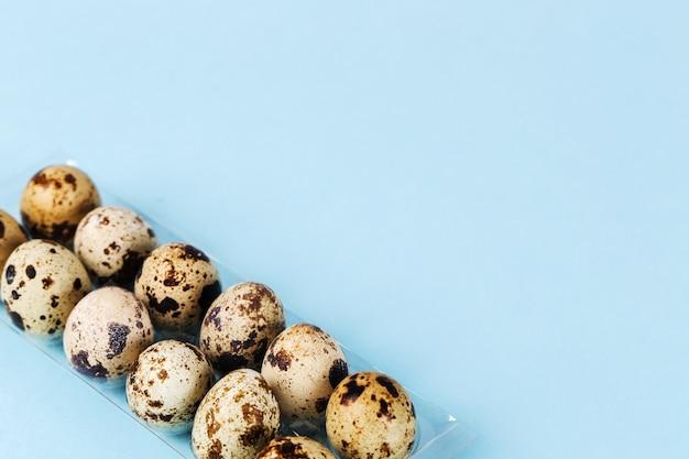 Ovos de codorna em azul Foto gratuita
