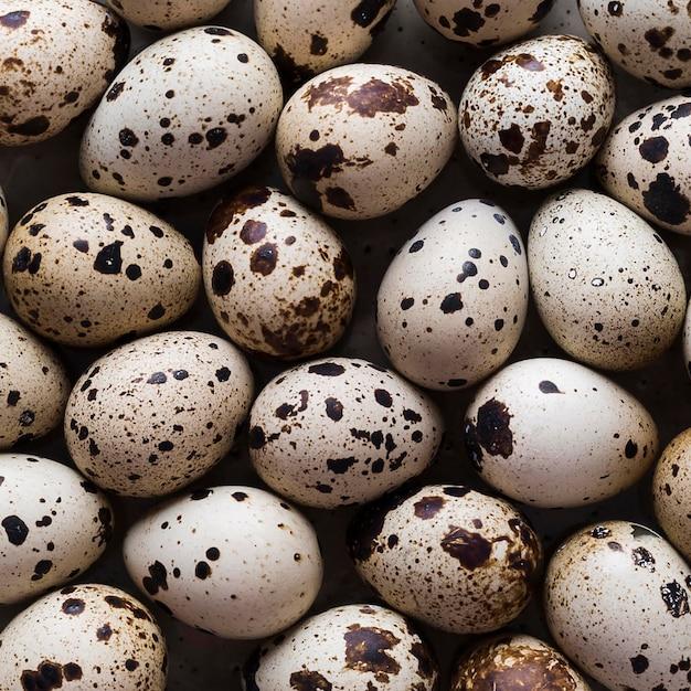 Ovos de codorna em close-up Foto gratuita