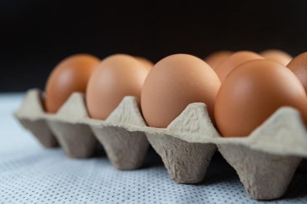 Ovos de galinha, colocados em uma bandeja de ovos. fechar-se. Foto gratuita