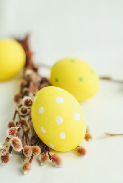 Ovos de páscoa, flores da primavera e salgueiro em fundo branco Foto Premium