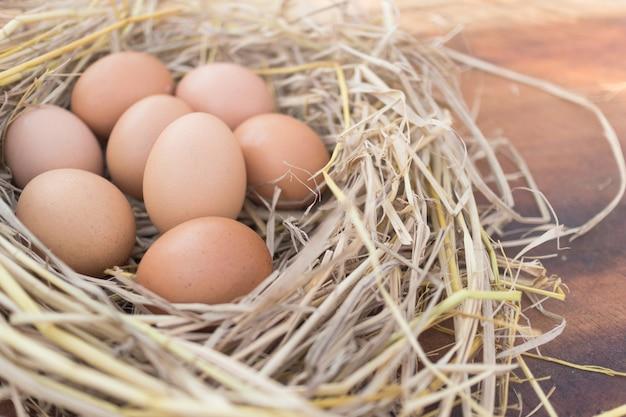 Ovos marrons frescos em um ninho em um de madeira na exploração agrícola de galinha com luz solar da manhã, imagem com espaço da cópia. Foto Premium