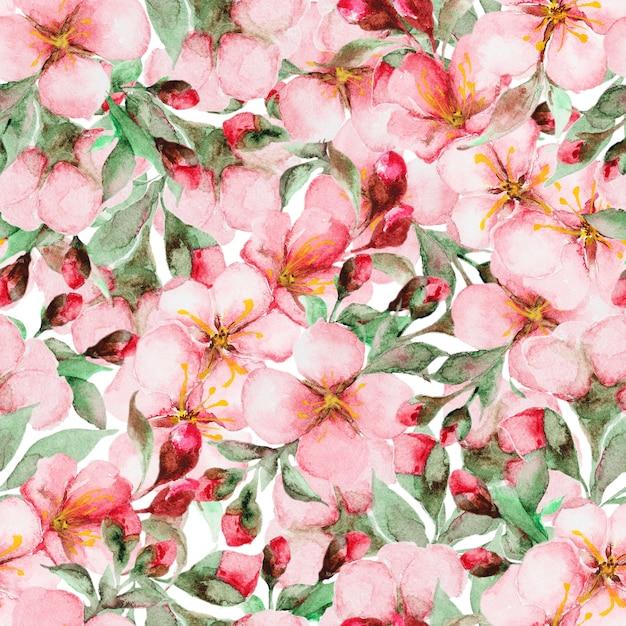 Padrão de flores em aquarela sakura Foto Premium
