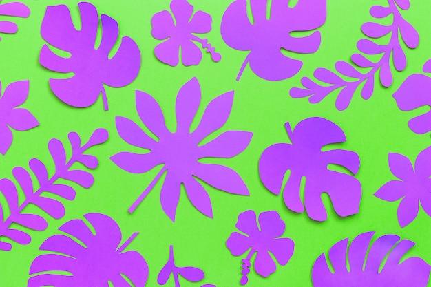 Padrão de folhas tropicais Foto Premium