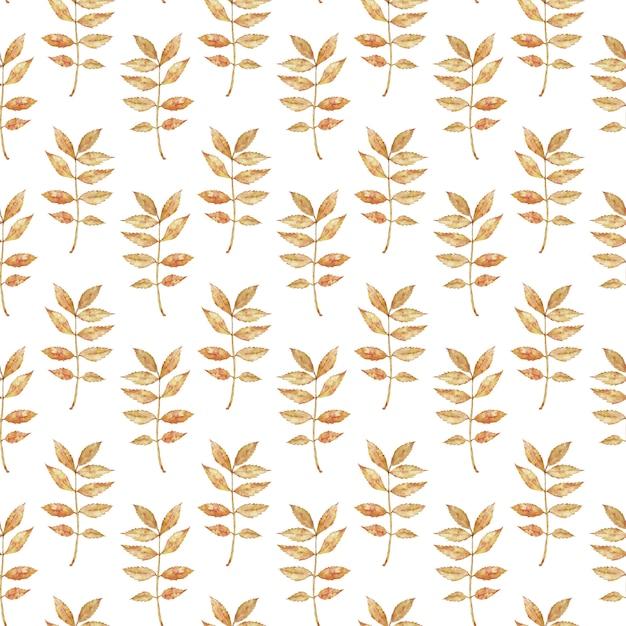 Padrão de ramo de outono em aquarela com folhas Foto Premium