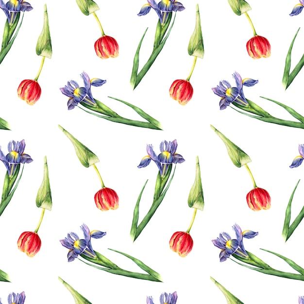 Padrão sem emenda de mão pintado íris e tulipa flores Foto Premium