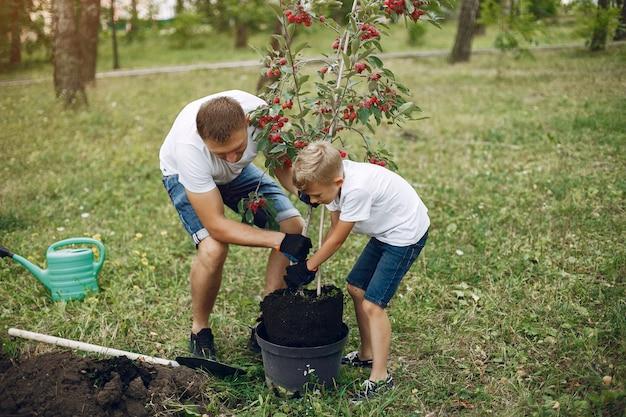 Pai com filho pequeno estão plantando uma árvore em um quintal Foto gratuita