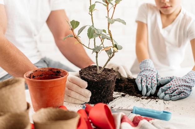 Pai e filho plantando plantas em casa juntos Foto gratuita