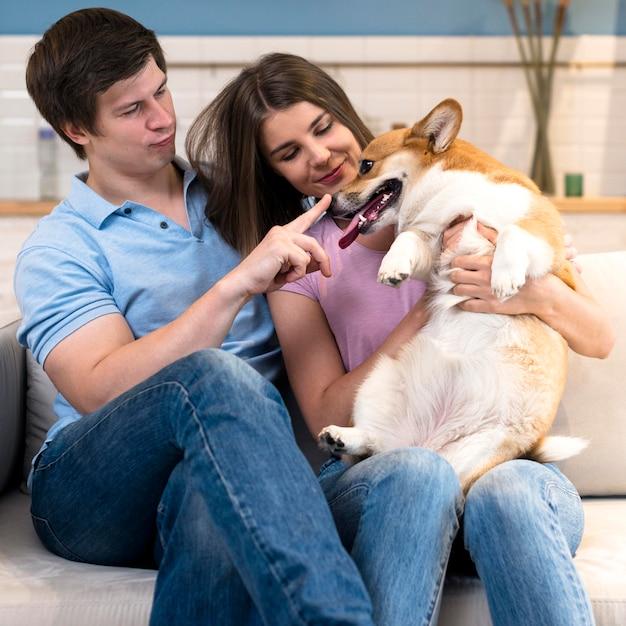 Pai e mãe brincando com cachorro fofo Foto Premium