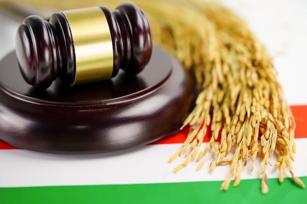 País de bandeira da hungria com martelo para advogado juiz. Foto Premium