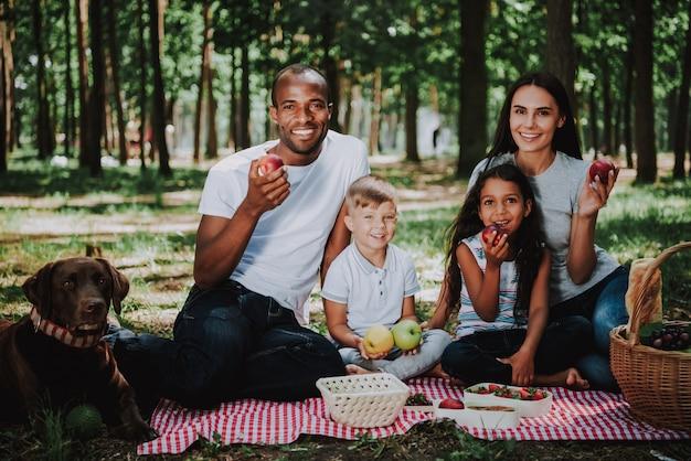 Pais jovens crianças e cão piquenique no parque Foto Premium