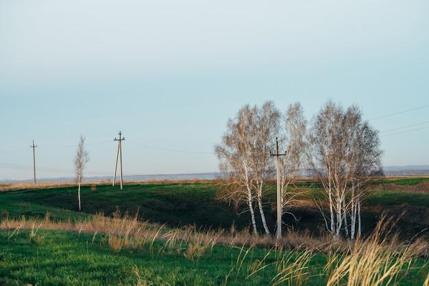Paisagem atmosférica com linhas elétricas no campo verde com estrada e árvores sob o céu azul. imagem de fundo de colunas elétricas com copyspace. fios de alta tensão acima do solo. setor de eletricidade Foto Premium