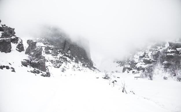 Paisagem bonita. inverno. dia de nevoeiro. montanha coberta de neve Foto Premium
