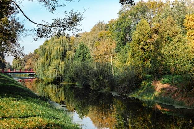 Paisagem bonita. parque do outono. Foto Premium
