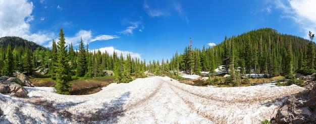 Paisagem cênica de montanhas com bosques perenes Foto Premium
