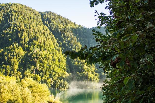 Paisagem com montanhas e árvores em primeiro plano Foto Premium