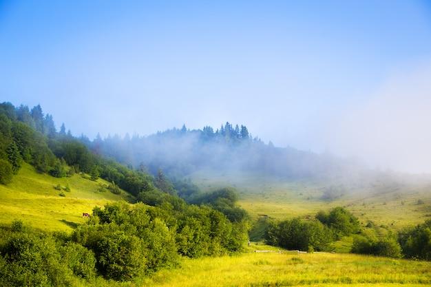 Paisagem da manhã com as montanhas carpathian da névoa em ucrânia. Foto Premium