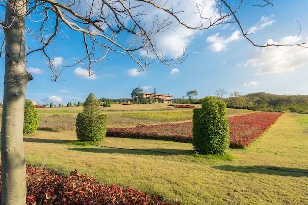 Paisagem de aldeias rurais na montanha com fundo do primeiro plano da árvore e do céu azul. Foto Premium
