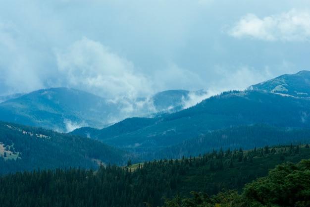 Paisagem de floresta de montanha verde Foto gratuita