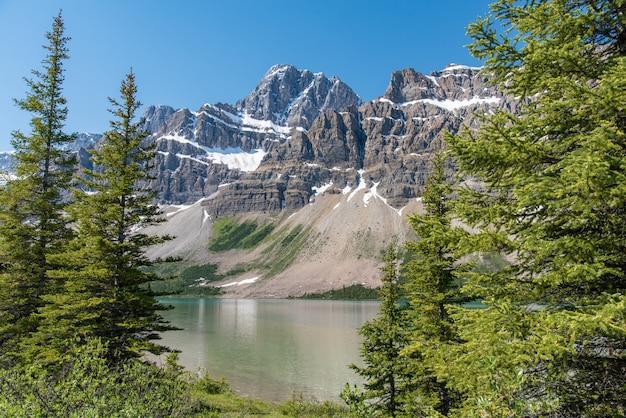 Paisagem de floresta do canadá com grande montanha ao fundo Foto Premium