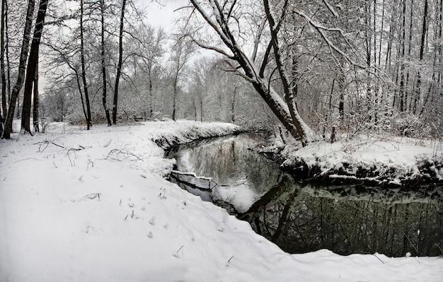 Paisagem de inverno com árvores nevadas e céu amarelo ensolarado Foto Premium