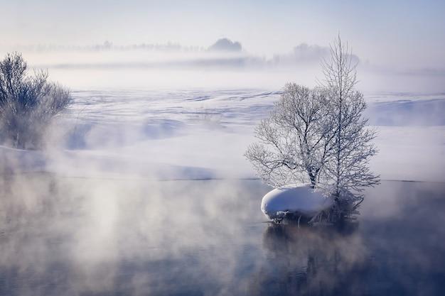Paisagem de inverno fabulosa no rio. névoa. árvores em uma pequena ilha no meio do rio. paisagem de manhã. Foto Premium