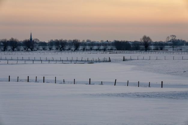Paisagem de inverno hipnotizante coberta de neve fofa na holanda Foto gratuita