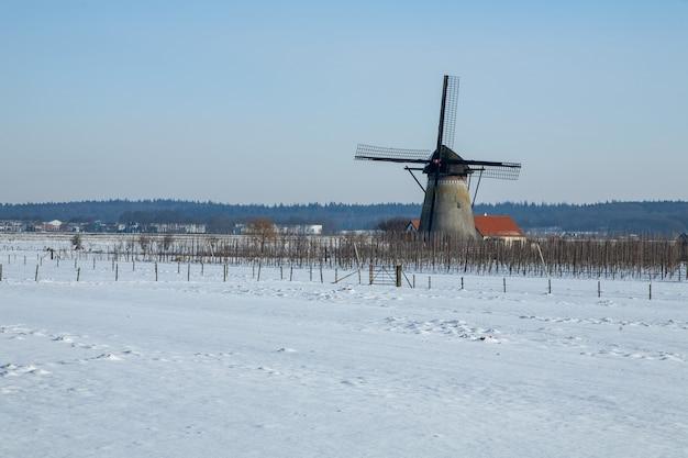 Paisagem de inverno hipnotizante coberta por neve fofa na holanda Foto gratuita