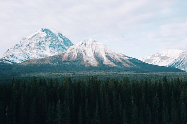 Paisagem de montanha deslumbrante com árvores em frente Foto gratuita